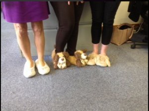 Charity Day - Wear your slippers to work day